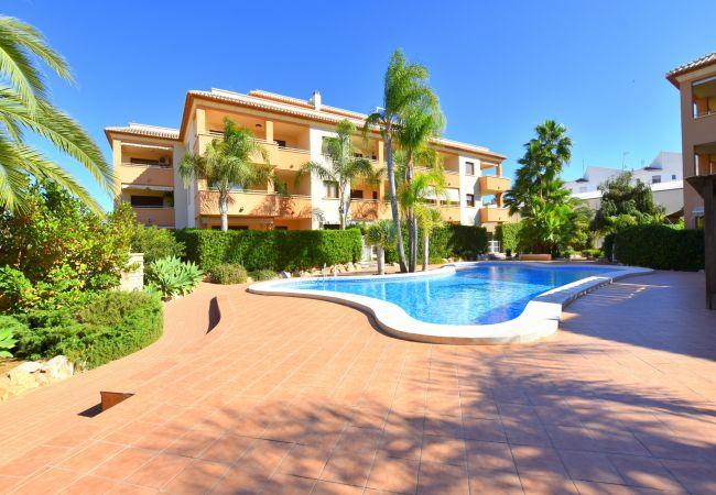 Apartment in Javea / Xàbia - Apartamento Benvinguts Javea - 5057
