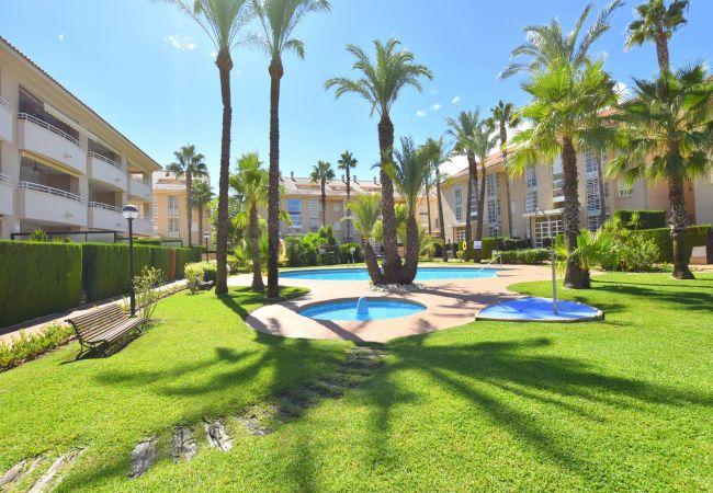 Apartment in Javea / Xàbia - Apartamento Golden Beach Javea - 5017